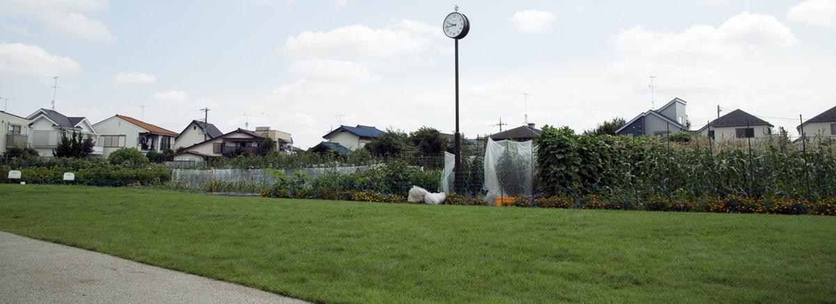 公園 ふれあい 農業